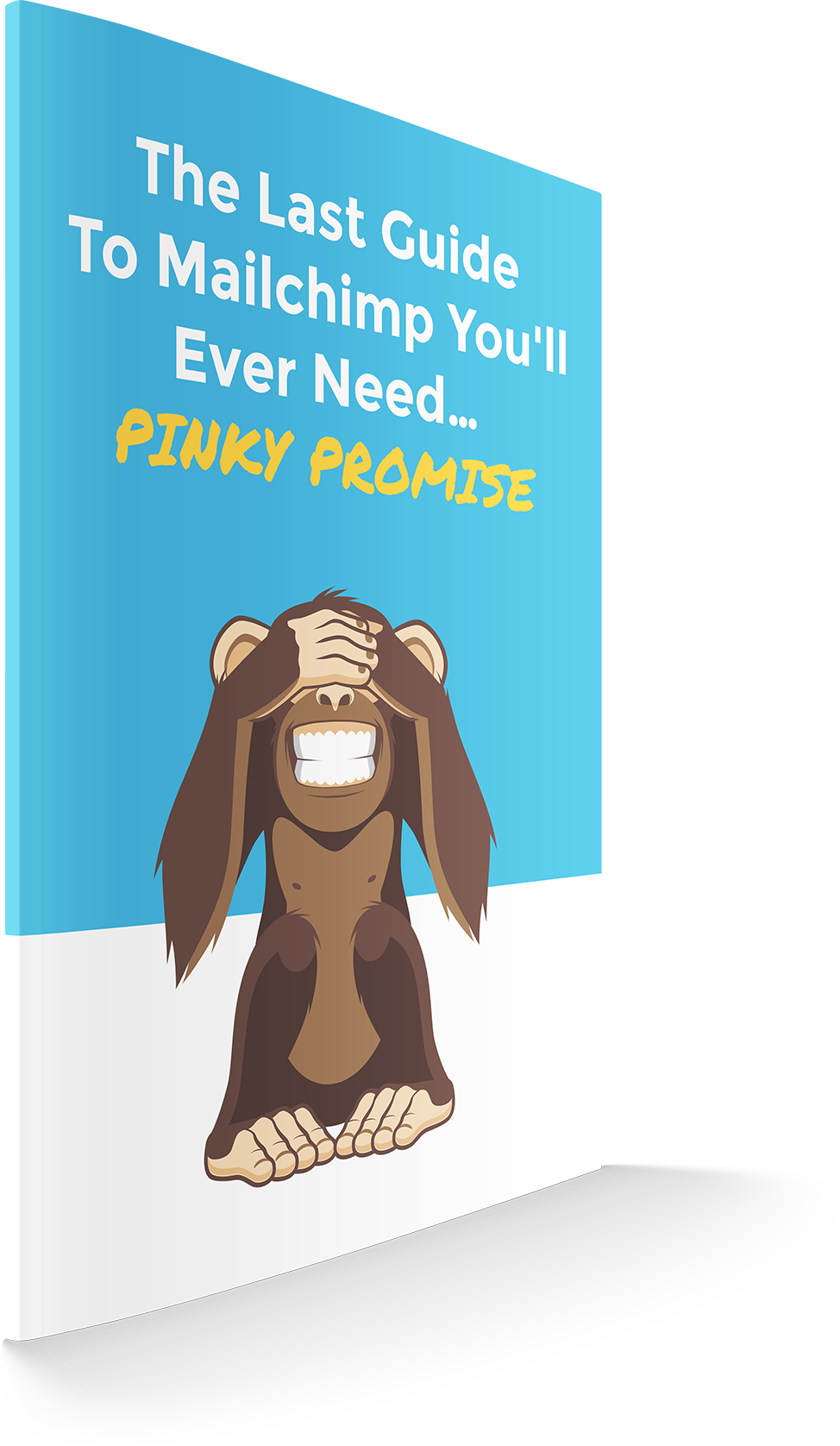 MailChimp Tutorial PDF Download